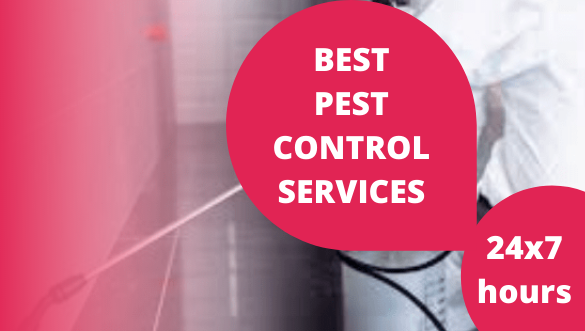 pest-controls